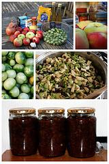 Chutney  Medium or Hot Spicy Condiments