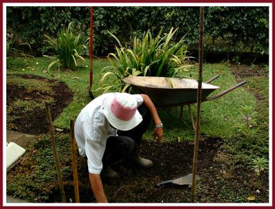 A Soil Test For Unhealthy Gardens