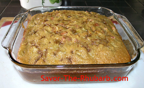 Baked rhubarb Amish Coffee Cake