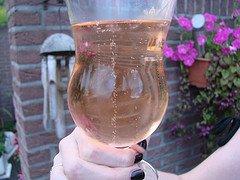 rhubarb-champagne