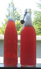 rhubarb nectar