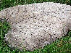 rhubarb leaf stepping stone